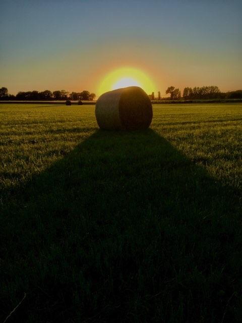 maliguene-broceliande-bretagne-eco-lieu-accueil-evenementiel-couche de soleil